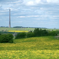Buy canvas prints of Emley Moor Transmitter by Alison Chambers