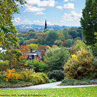 Buy canvas prints of Autumn Comes To Sheffield  by Alison Chambers
