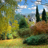 Buy canvas prints of Sheffield Botanical Gardens Autumn by Alison Chambers