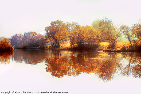 Dearne Valley Park Framed Mounted Print by Alison Chambers