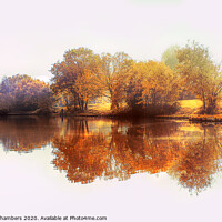 Buy canvas prints of Dearne Valley Park by Alison Chambers