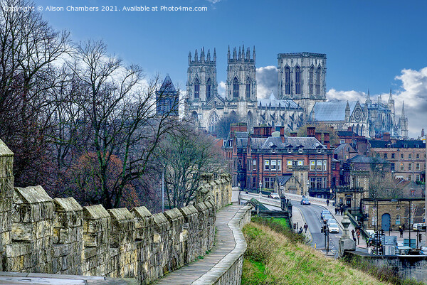 York Minster and City Wall Landscape. Framed Mounted Print by Alison Chambers