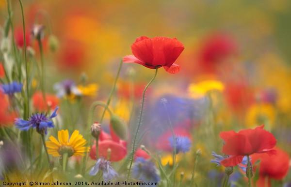 Meadow Flowers Canvas print by Simon Johnson