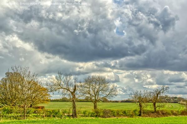 Suffolk Skies Framed Print by DAVID FLORY