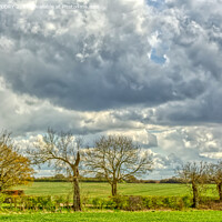 Buy canvas prints of Suffolk Skies by DAVID FLORY