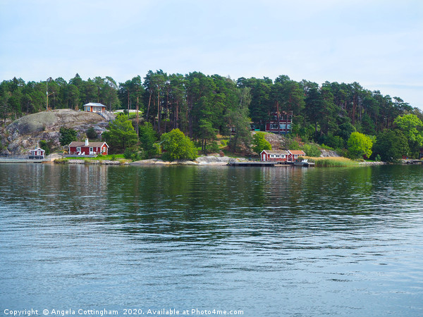 Island in the Stockholm Archipelago Canvas print by Angela Cottingham