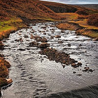 Buy canvas prints of Bollihope Burn by Aimie Burley