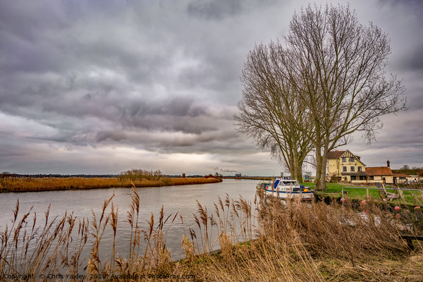 On the bank of the River Yare Canvas Print by Chris Yaxley