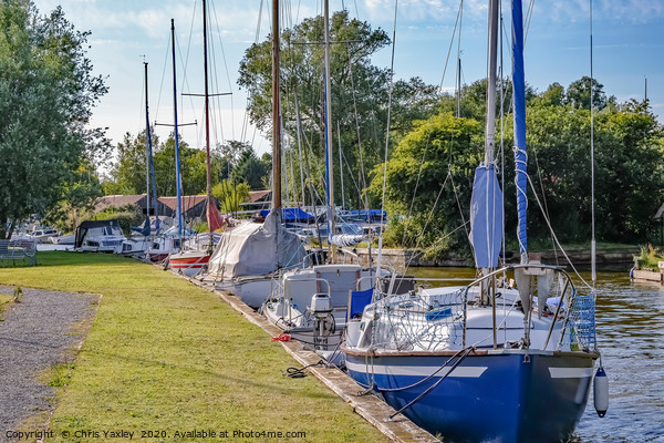 Sailing boats moored in Hickling, Norfolk Broads Canvas Print by Chris Yaxley