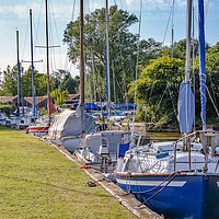 Buy canvas prints of Sailing boats moored in Hickling, Norfolk Broads by Chris Yaxley
