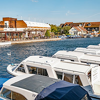 Buy canvas prints of On the bank on the River Bure in Wroxham, Norfolk by Chris Yaxley