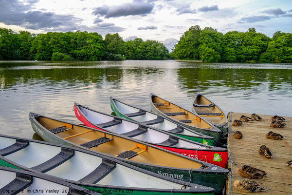 Moored canoes and kayaks Canvas Print by Chris Yaxley