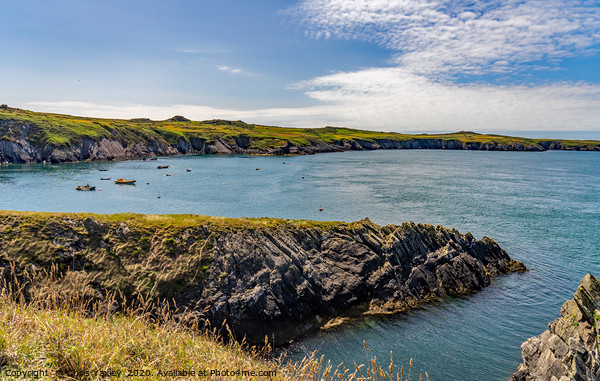 A view across St Justinian's on the Pembrokeshire  Canvas Print by Chris Yaxley
