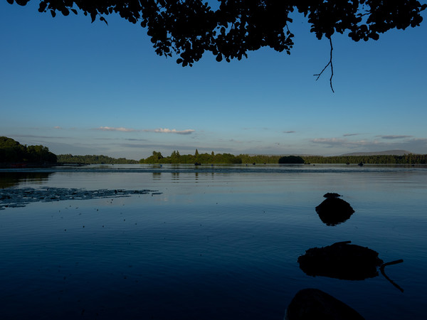Lake of Menteith at Dusk Canvas print by Emma Dickson