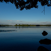 Buy canvas prints of Lake of Menteith at Dusk by Emma Dickson