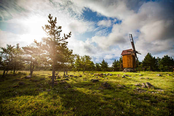 Wooden windmill and trees on sunrise.  Canvas Print by Alexey Rezvykh