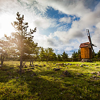 Buy canvas prints of Wooden windmill and trees on sunrise.  by Alexey Rezvykh