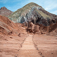 Buy canvas prints of The Path by Scott Thomson