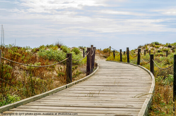 wooden boardwalk in the dunes leading to the sandy beach, the path by the sea, plants on the dunes Framed Mounted Print by Q77 photo