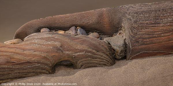 Beach Textures Framed Print by Phillip Dove