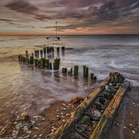 Buy canvas prints of Heacham Groynes by evening light by Phillip Dove