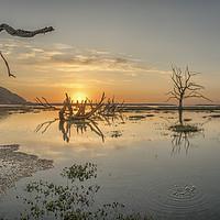 Buy canvas prints of Spring Tide Sunset on Porlock Marsh, Exmoor by Shaun Davey