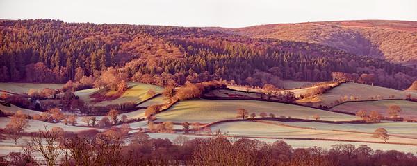 Frosty dawn fields on the Vale of Porlock Canvas Print by Shaun Davey