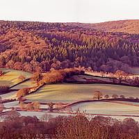 Buy canvas prints of Frosty dawn fields on the Vale of Porlock by Shaun Davey