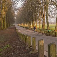 Buy canvas prints of Riding through Pontcanna Fields, Cardiff by Shaun Davey