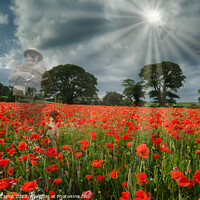 Buy canvas prints of They shall not grow old by Richard Taylor
