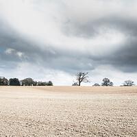 Buy canvas prints of Jack Mytton Way; Eudon, Shropshire.  by Steve Taylor