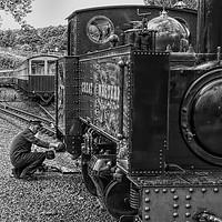 Buy canvas prints of Vale of Rheidol Railway by Peter Hunt