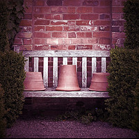 Buy canvas prints of Secluded garden bench by Peter Hunt