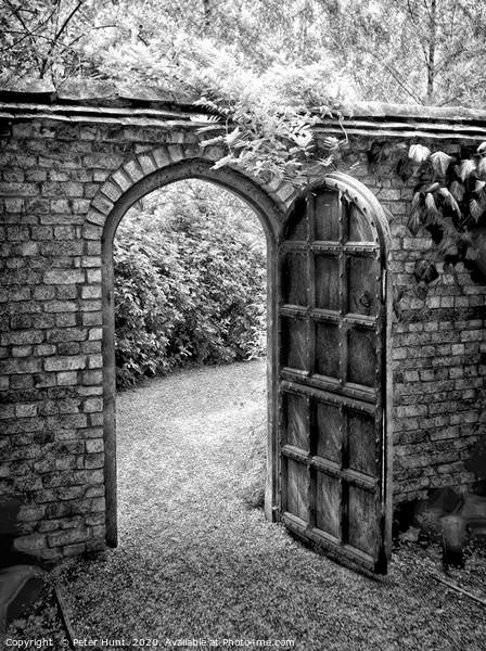 Enter the secret garden Canvas Print by Peter Hunt
