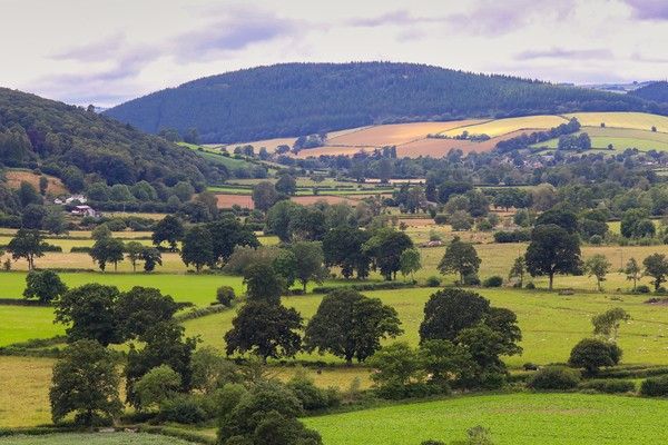 South Shropshire landscape of the Clun Valley Canvas Print by Simon Marlow