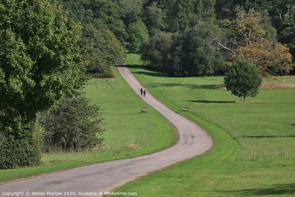 Cycling through Windsor Great Park Print by Simon Marlow
