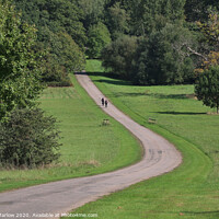 Buy canvas prints of Cycling through Windsor Great Park by Simon Marlow