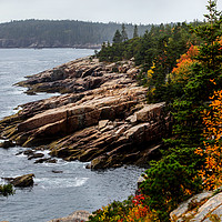 Buy canvas prints of Rocky coastline with foliage colors by Miro V