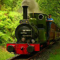 Buy canvas prints of dolgoch between abergynolwyn & nant gwernol by mark baker