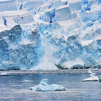 Buy canvas prints of Icebergs Snow Glaciers Charlotte Bay Antarctica by William Perry