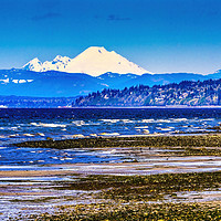 Buy canvas prints of Mount Baker Bracketts Landing Edmonds Washington by William Perry