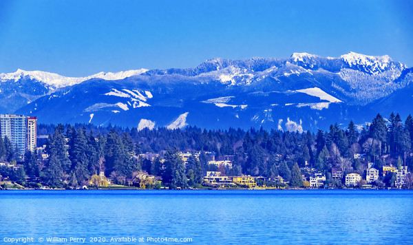 Lake Washington Snow Capped Mountains Bellevue Washington Framed Mounted Print by William Perry