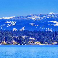 Buy canvas prints of Lake Washington Snow Capped Mountains Bellevue Washington by William Perry