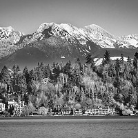 Buy canvas prints of Black and White Lake Washington Bellevue Washingto by William Perry