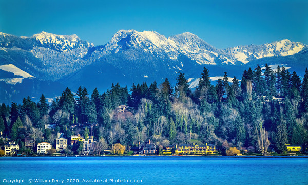 Lake Washington Snow Capped Mountains Bellevue Was Framed Mounted Print by William Perry