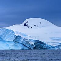 Buy canvas prints of Floating Blue Iceberg Charlotte Harbor Antarctica by William Perry
