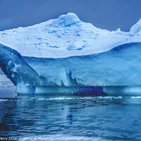 Buy canvas prints of Snowing Blue Iceberg Paradise Bay Antarctica by William Perry
