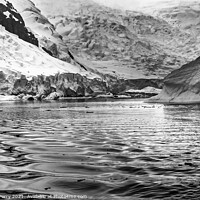 Buy canvas prints of Black and White Glacier Snow Mountains Paradise Bay Skintorp Cov by William Perry