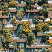 Buy canvas prints of Bosco Verticale, Urban Forest In Milan by Radu Bercan