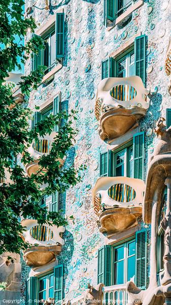 Casa Batllo, Antoni Gaudi Architecture, Barcelona Framed Mounted Print by Radu Bercan